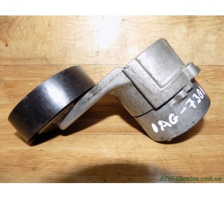Натяжной ролик ремня ГРМ, Opel Astra G, 1.4, 1.6, 950205, 205000
